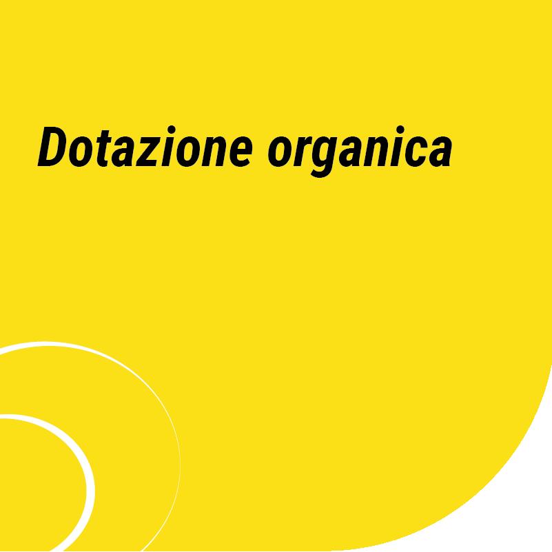 Dotazione organica